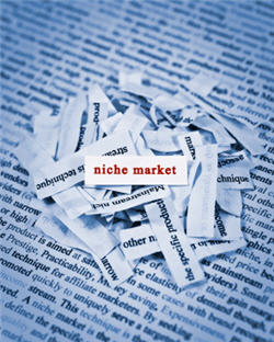 How to make a niche